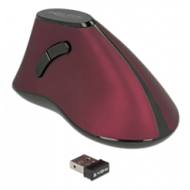 Mouse - ergonomic - right-handed - optical - 5 buttons - wireless - 2.4 GHz - wireless USB receiver DeLOCK / 12528